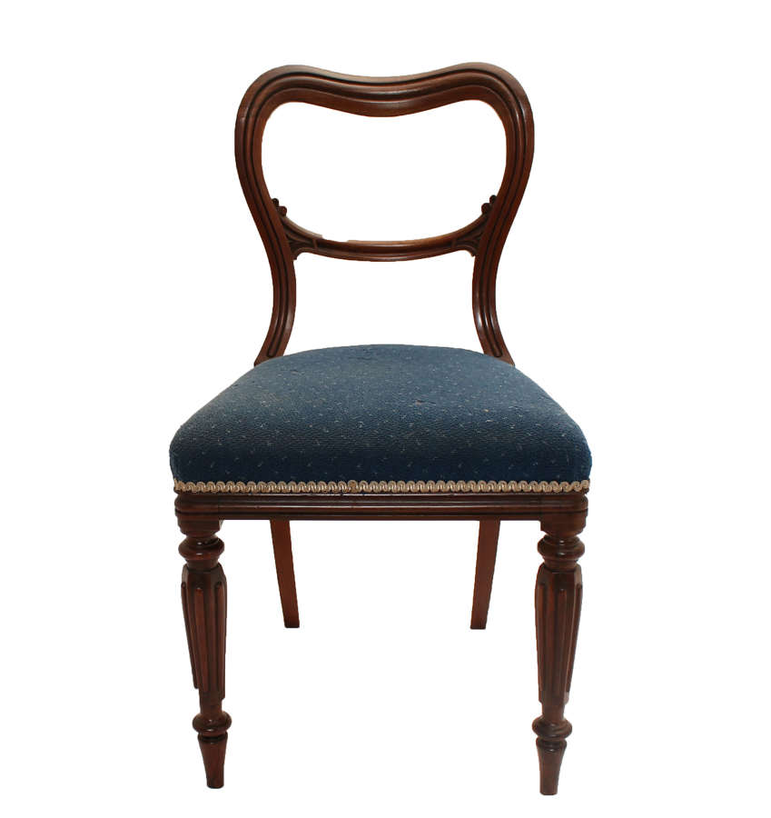 6x Kendall Kidney Back Rosewood Dining Chairs with Original Label